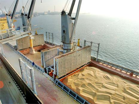 На территории порта Азов появится терминал для перевалки экспортного зерна